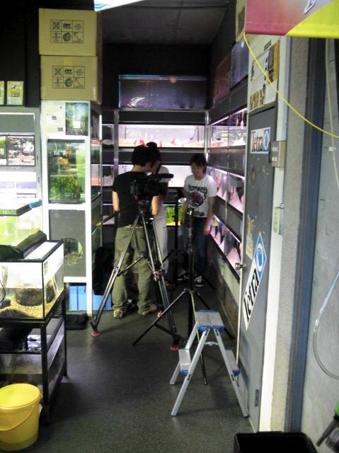 テレビ番組制作