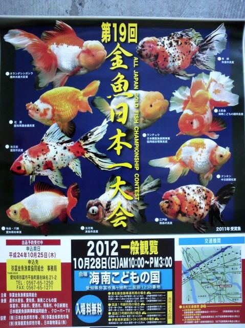 第19回 金魚日本一大会